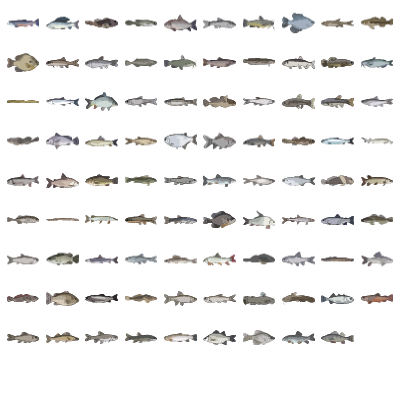 Freshwater Fishes Preview Small