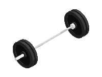 Barbell Bar with Weights