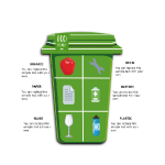 Eco Friendly Infographic thumb